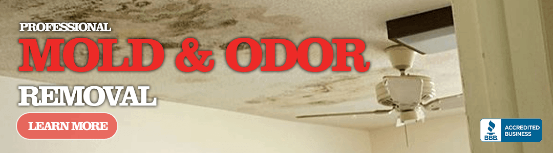 Basement Waterproofing, Roofing, Chimney Repair, Foundation Repair, Mold Removal, Rochester NY