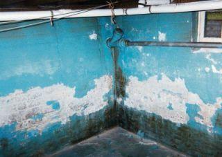 peelingwaterproofpaint